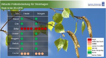 Pollenflug-Vorhersage als Grafik